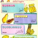 GALERI: Buah-buahan : فـَــاكـِــهـَــة (buah) : فـَــوَاكـِــهُ (buah-buahan)