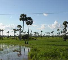 Belajar Bahasa Kemboja (Khmer)