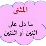 نحو/NAHU: Kata Nama Mufrad, Muthanna Dan Jama'